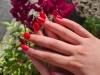 Gellak op natuurlijke nagels